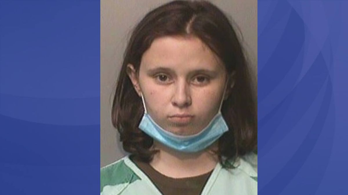Iowa woman accused of stabbing, trying to drown cat