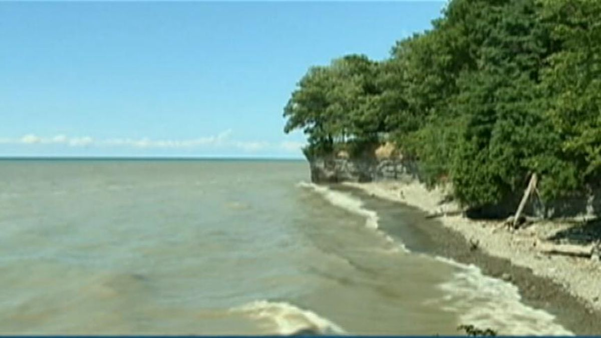Police: Body of missing swimmer found on Lake Erie beach