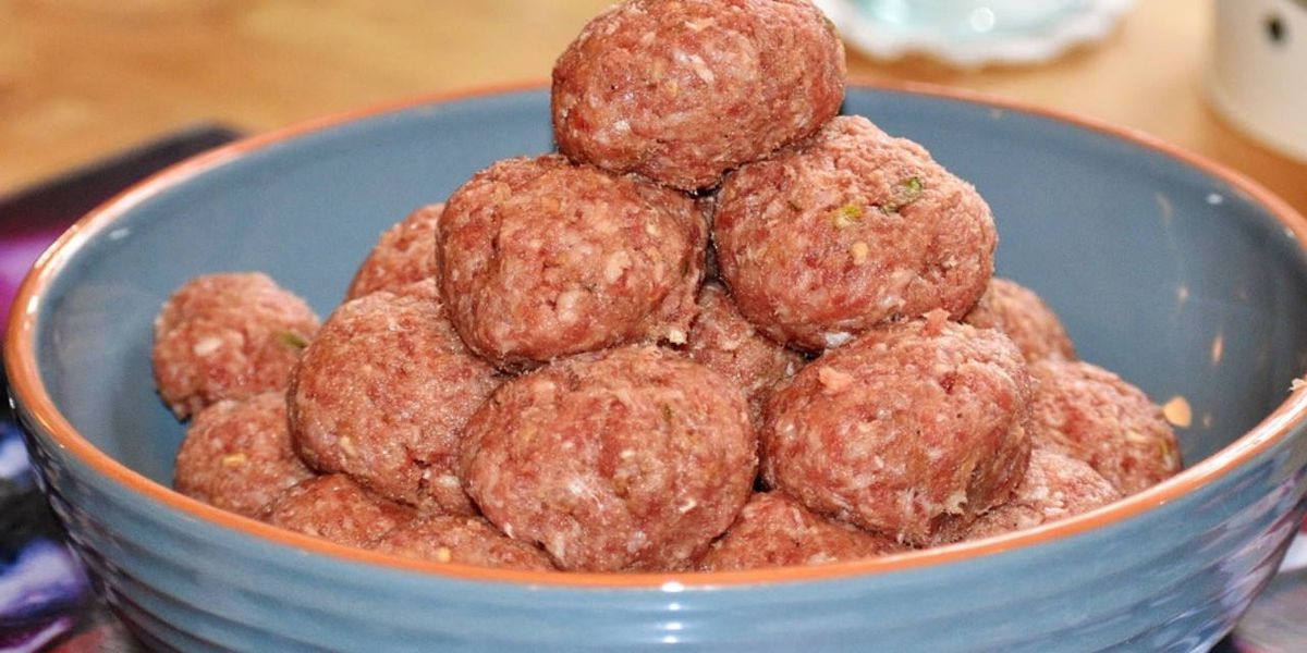 Investigation underway in San Antonio after dog eats meatball laced with antifreeze