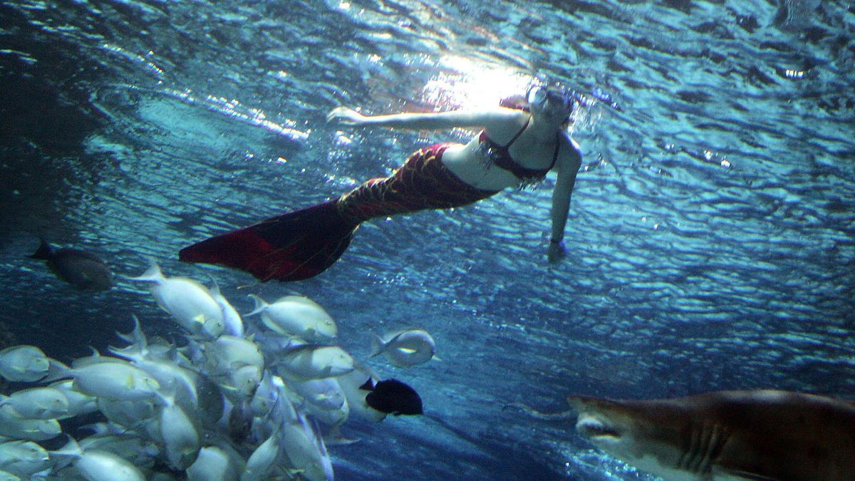Mermaid statue appears on San Diego beach, community leader calls it 'graffiti'