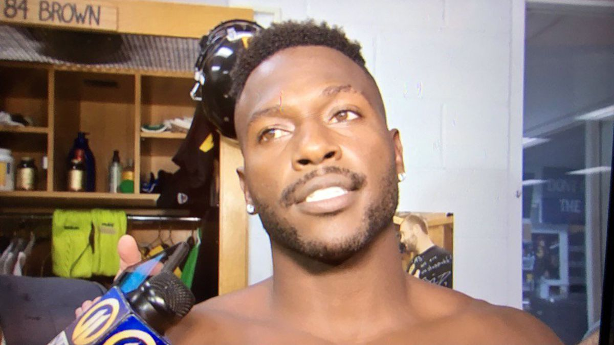 Steelers' Antonio Brown appears as surprise guest on 'Masked Singer'