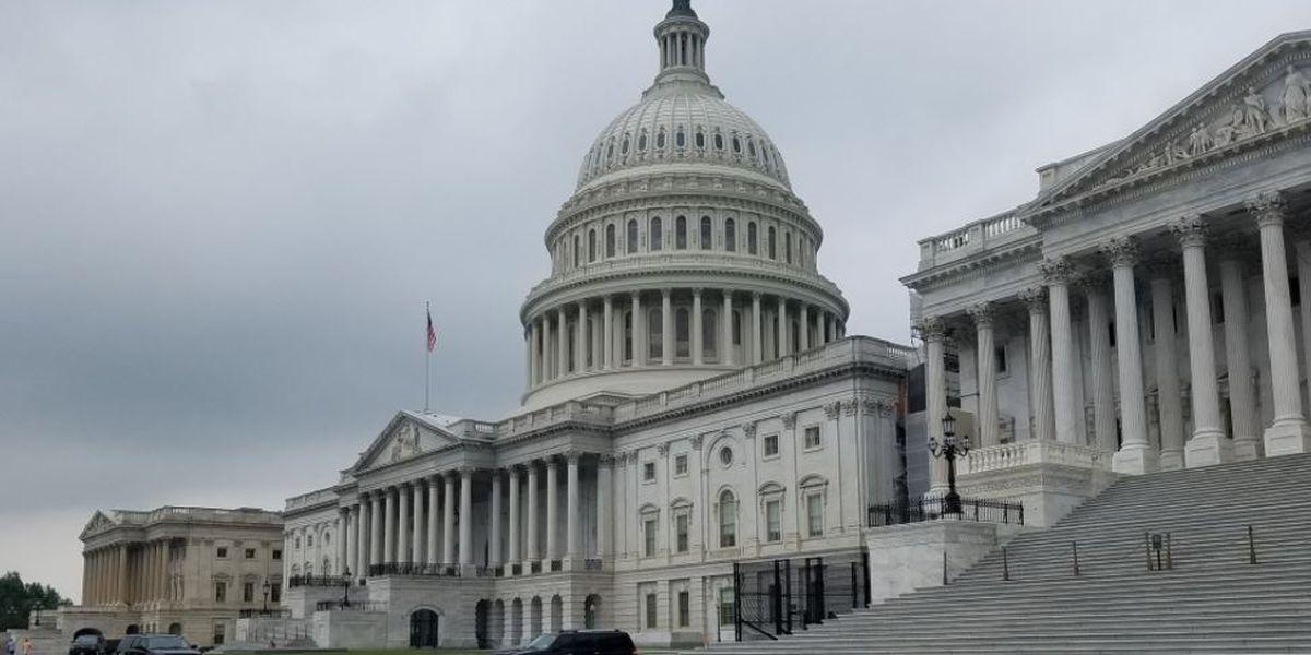 GOP wants Hunter Biden, Ukraine whistleblower as impeachment witnesses
