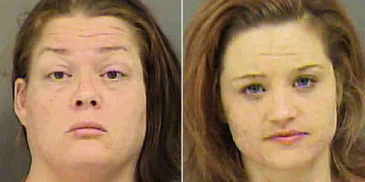 2 alleged members of Felony Lane Gang, known to target moms, arrested