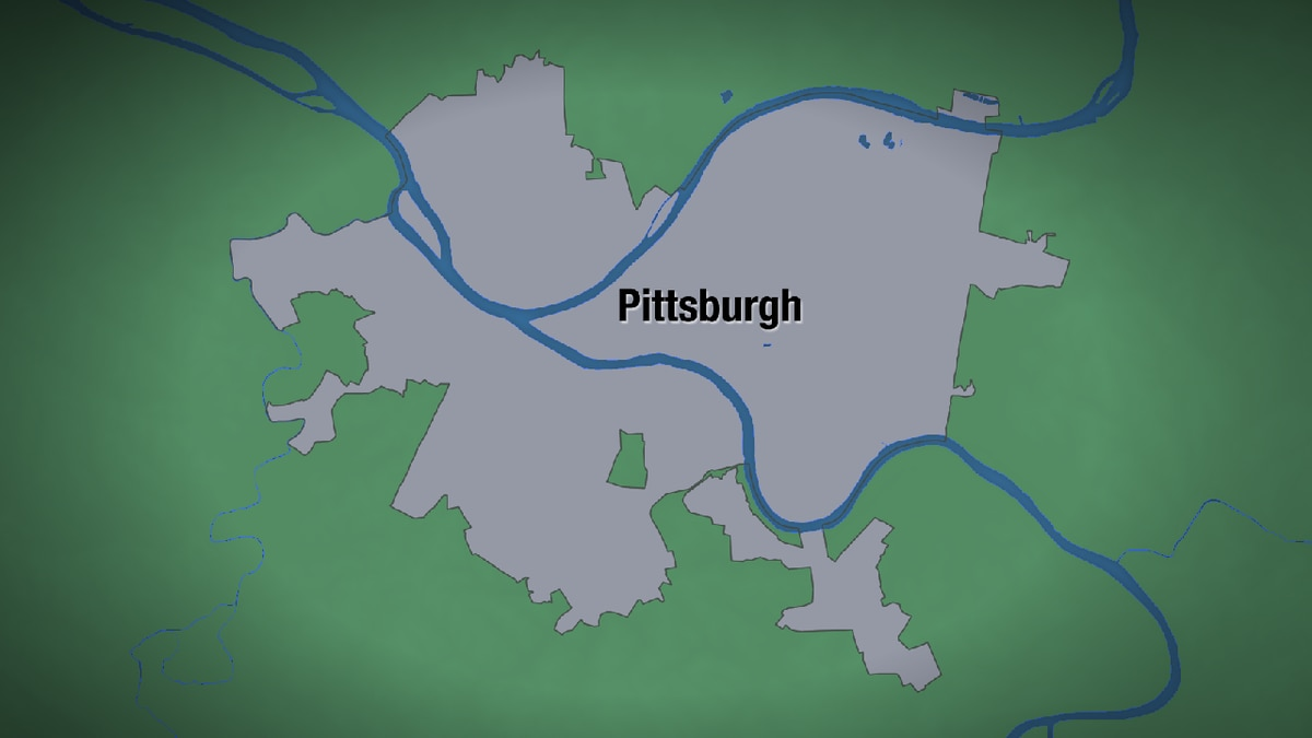 Man pulled from Allegheny River dies at hospital